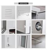 金属の単一のドアは貯蔵用ロッカーに着せる