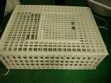 cage de transport des animaux 100%PE/caisse se pliantes rotation de poulet