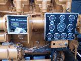 Generatore approvato del gas di /Biomass del gas di /Natural del biogas 750kVA/600kw del CE