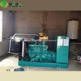gerador do gás 50kw natural/gerador gás de metano/gerador do biogás