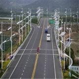 luz del viento solar 30W LED de los 6m