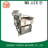 Arruela e máquina de lavar dos vegetais de raiz com líquido de limpeza de escova Tsxm-40