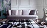 Sofà del tessuto per la mobilia del salone