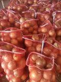 수출 신선한 채소 좋은 품질 황색 양파