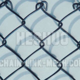 PVC Coated Chain Link Fence de 3mm