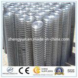 Treillis métallique soudé soudé galvanisé plongé chaud d'acier inoxydable de treillis métallique
