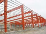 Magazzino/Workhop Buildings Metal Structure con Crane