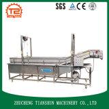 Equipo de proceso de fruta usado para la limpieza y el lavado Tsxq-30 de la fruta