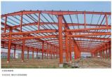 5000-200000m2 Grand Span moderne Prefab construction
