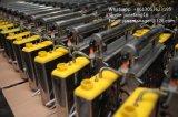 Machine/pulvérisateur thermiques portatifs réglables de regain de professionnel