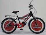 자전거 틴에이저 자전거 (FP-KDB-17021)가 파키스탄 대중적인 작풍에 의하여 농담을 한다