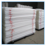 Plastikflachdraht-Ineinander greifen/flaches Plastiknetz