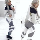 여자의 옷을%s 여위는 단단한 바지가 형식 스포츠 각반에 의하여 기지개한다