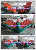 Trasparenza gonfiabile Rocket di giro del gioco dell'acqua per divertimento (MIC-282)