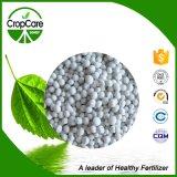 La alta calidad orgánica retarda el fertilizante del desbloquear NPK