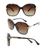 Gafas de sol plásticas de la manera del diseñador a estrenar para las mujeres/señora (DP1235YZ)