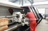 Ölfeld engagierte künstliche Oillift Schrauben-Pumpe für Erdölgewinnung Glb420/20