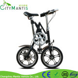 Mini bicicleta Foldable de pouco peso da bicicleta 16inch para a venda