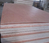 Uty Grade From 1.6mm bis 18mm E Glue Poplar oder Hardwood Core Commercial Packing Plywood mit Cheaper Price