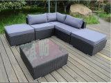 Sofà di vimini del rattan della mobilia per il giardino con il blocco per grafici di alluminio