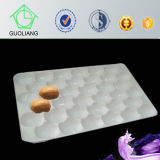 2015 Selling caldo FDA Approved 39*59cm Transportation Protective Blister Disposable Food Contract pp Trays per Apple in Europa