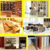 Heiße Verkaufs-Küche-Schrank-Möbel
