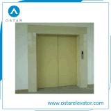 El almacén utilizó la elevación grande del cargo de la capacidad de cargamento con alta calidad