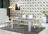 Jantando Table e New Stelish Dining Chair Set (CT-163 CY-112)