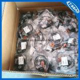 Tutti i generi di kit di riparazione di gomma per l'automobile, il trattore ed il motociclo