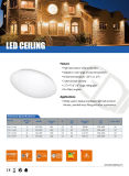 Luz de techo simple de interior montada superficie del estilo LED con el Ce RoHS de la buena calidad