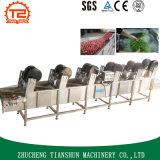Secador eléctrico y secador grande del alimento de la capacidad para la fruta y verdura