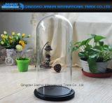 15*33cm antiker Taktgeber, Puppe oder Bildschirmanzeige-Glasabdeckung und Standplatz