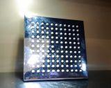 Tête de douche d'acier inoxydable avec le placage à l'or