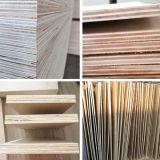Classe material da madeira compensada C/D da decoração da madeira compensada do núcleo do Poplar da face do vidoeiro branco