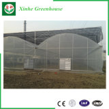 China Multi-Überspannung Stahlrahmen-Aluminiumprofil-Plastikgewächshaus