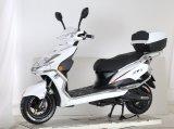 E-Motocicleta 800W com preço favorável