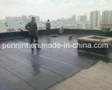 Membrana impermeável do betume da película Sbs/APP do PE para o telhado expor