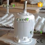 generatore a magnete permanente a bassa velocità 1-50kw per la turbina di vento