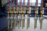 Máquina de estaca do CNC das tiras para o feixe do metal H
