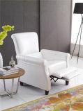 Mobília de couro do sofá de Italy do lazer (775)