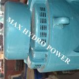Gerador com excitação controlada por computador do SCR para a hidro central eléctrica