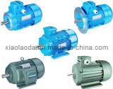 MS série de três Fase assíncronos Motores elétricos