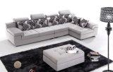 El sofá modificó algodón de la buena calidad para requisitos particulares de muchas tallas