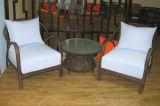 Tabella Furniture-133 esterno del rattan di svago