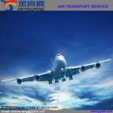 O transporte relativo à promoção o mais novo do ar de China aos EUA