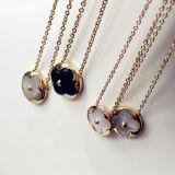 女性の宝石類の方法14k金によってめっきされる鎖骨の鎖の花のネックレス