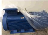 Motor de indução elétrica trifásico