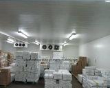 産業食糧レベルの冷蔵室