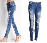 Les jeans endommagés par fille amincissent des jeans dans la taille positive