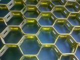 ステンレス鋼のカメのシェルの網